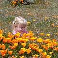 Emma Poulsen, Antelope Valley California Poppy Reserve, Lee Poulsen