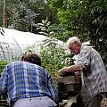 Harry's garden, Harry Hay, Lee Poulsen