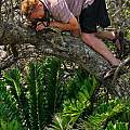 Me up a tree in southern Mozambique