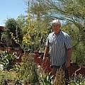 Albuca clanwilliamae-gloria, plants, Leo Martin
