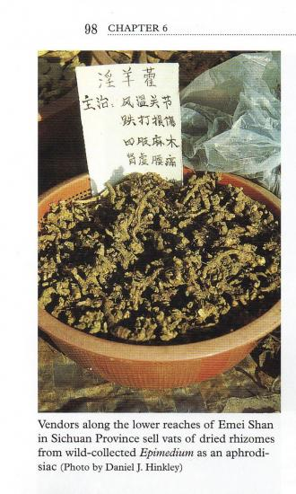 Epimedium rhizomes sold as an aphrodesiac in China, 1996, Daniel J. Hinkley