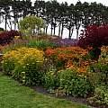 MCBG, perennial garden, Bob Rutemoeller