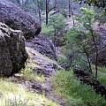 Pinnacles National Park, Mary Sue Ittner