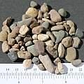 building gravel, M. Gastil-Buhl