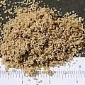 Sand, horticultural, M. Gastil-Buhl