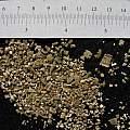 Vermiculite, Nhu Nguyen