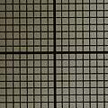 1 mm grid at 1:1 magnification, David Pilling